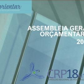 Assembleia Geral Orçamentária aprova contas do CRP18-MT e manutenção de anuidades e taxas para 2021