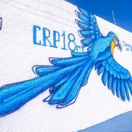 Representantes do CRP18-MT apresentam Sistema Conselhos para alunos de Psicologia em Rondonópolis